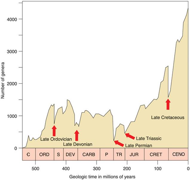 Timeline các vụ tuyệt chủng lớn